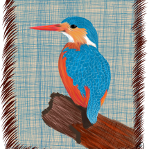 Mrs. Kingfisher
